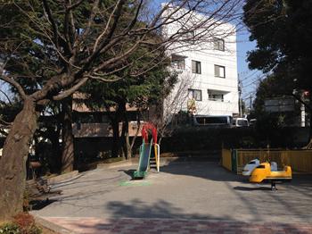 2014・2.25 みどりと花7_R