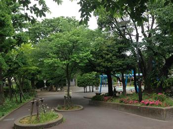 みどりと花2014・5・16・1_R