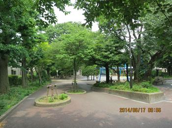 2014・6・17みどり7_R