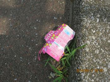 2014・6・17みどり6_R
