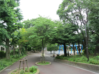 2014・6・26・6_R