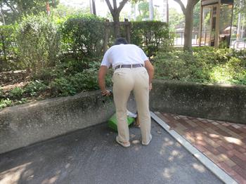 2014・9・12みどりと花6_R