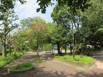 2014・9・12みどりと花11_R