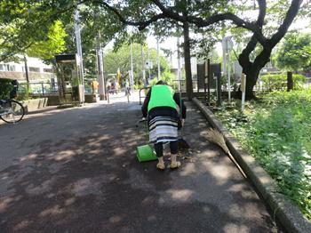 2014・9・12みどりと花7_R