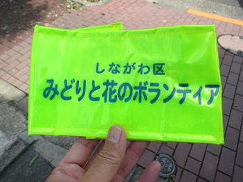 2014・9・12みどりと花12_R