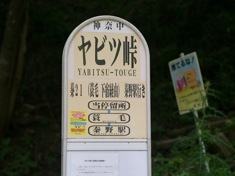 P1080504.jpg