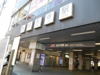 DSCN8584.jpg