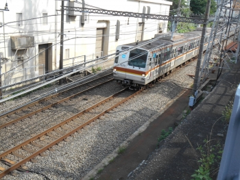 DSCN8614.jpg