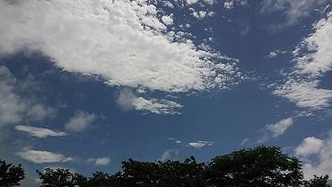 NCM_2746b.jpg