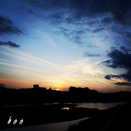IMG_20140209_191147.jpg