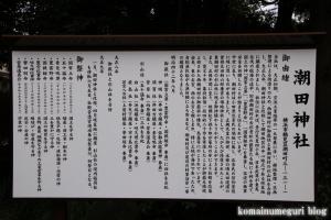 潮田神社(鶴見区潮田町)4