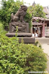 若宮八幡宮(川崎区大師駅前)25