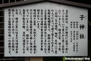 稲毛神社(川崎区宮本町)29