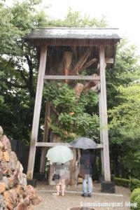 犬山城(愛知県犬山市犬山北古券)32