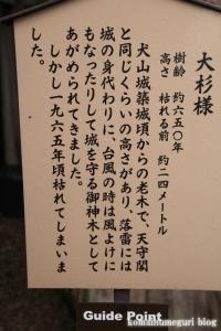 犬山城(愛知県犬山市犬山北古券)33