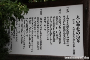犬山神社(愛知県犬山市犬山北古券)3