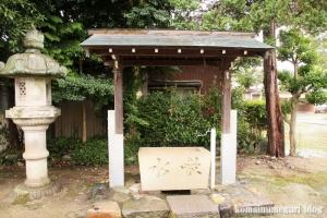 犬山神社(愛知県犬山市犬山北古券)5