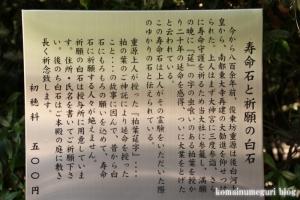 多賀大社(滋賀県犬上郡多賀町大字多賀)31