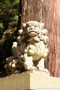 多賀大社(滋賀県犬上郡多賀町大字多賀)54