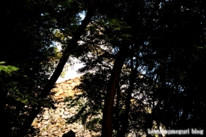 彦根城(滋賀県彦根市金亀町)15