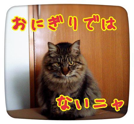 2014-04-09-19-33-34_deco.jpg