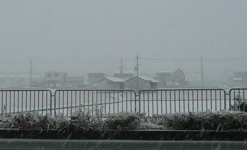 和歌山だって2014-04