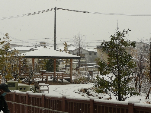 和歌山だって2014-06