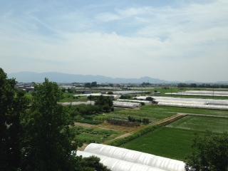 長谷川公園②