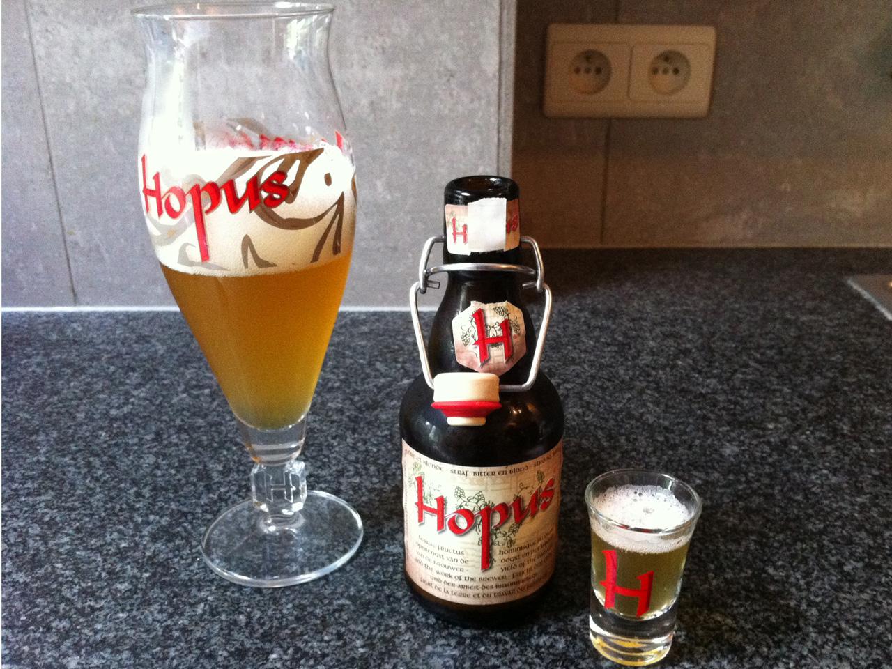 hopus6