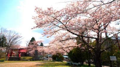 巽山公園ブログa