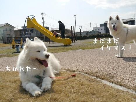 20140323_12.jpg