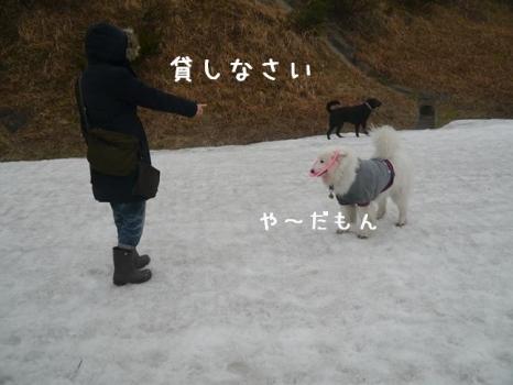 20140420_03.jpg