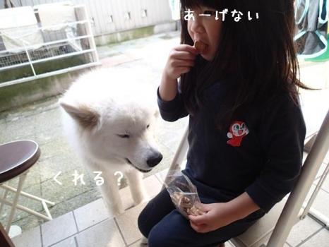 20140511_02.jpg