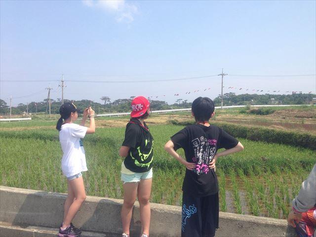 photo2(1)_R.jpg