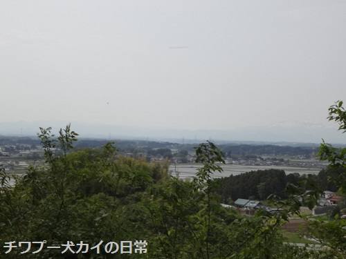 DSC05129.jpg