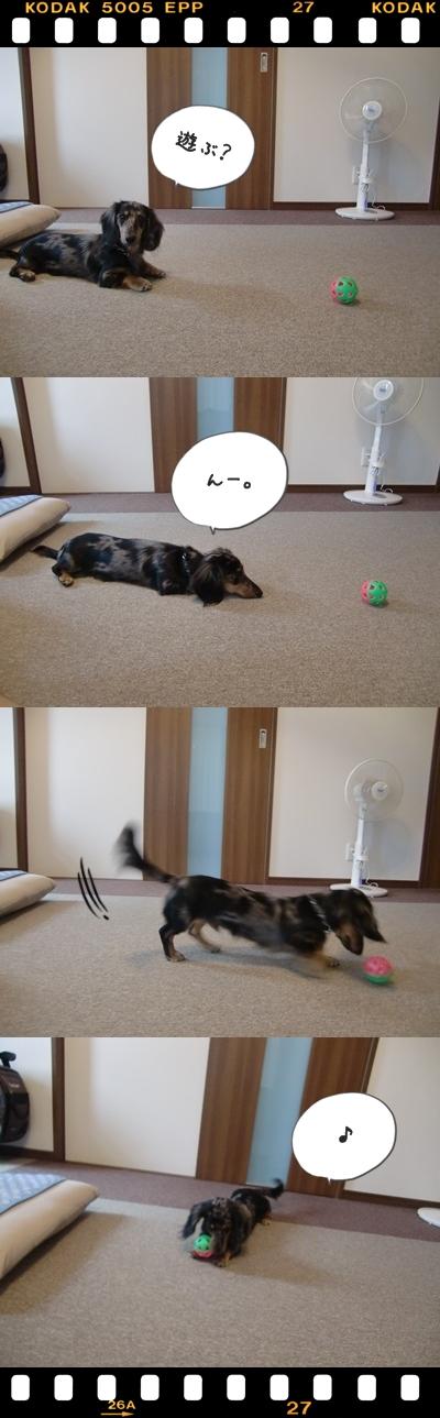 cats0826.jpg