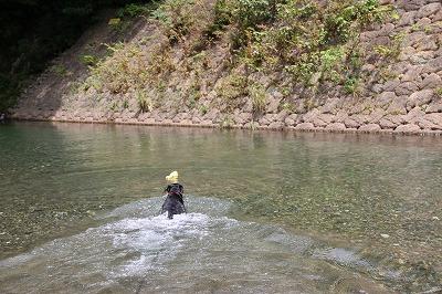 後ろ向き泳ぐ