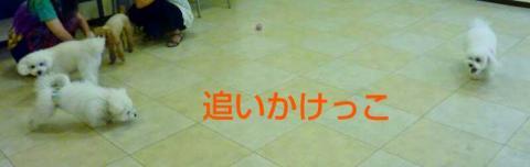 1408288159926.jpg