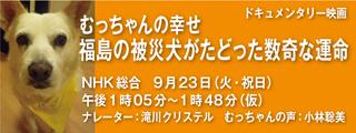 NHK_320x120.jpg