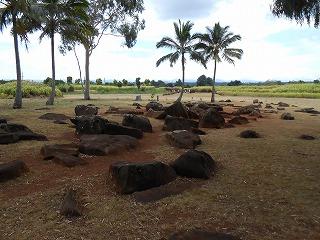 ハワイ 2013.8 267