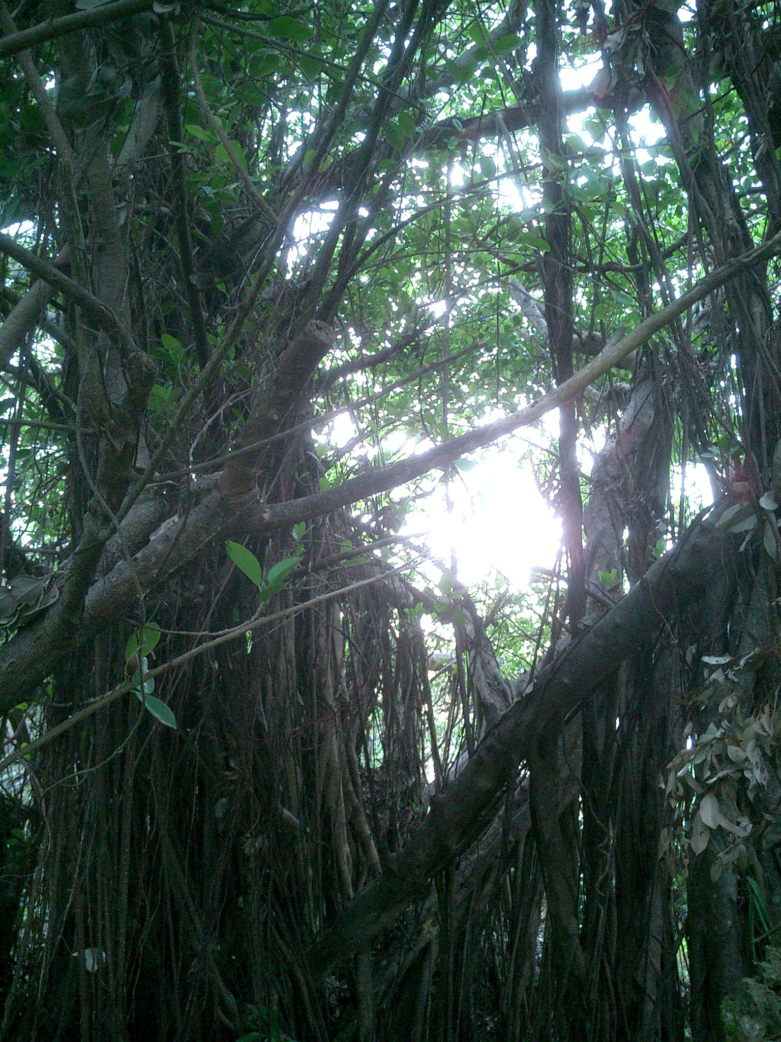 2012 沖縄 048
