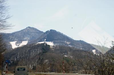 14-4-13花見山