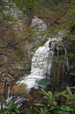 14-5-3萱滝2