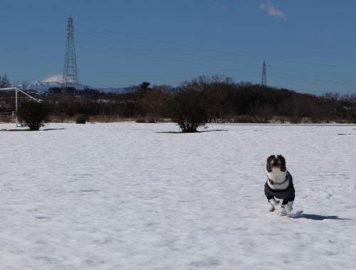snow201415_convert_20140217163318.jpg