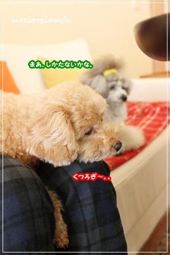 IMG_9824おうち8