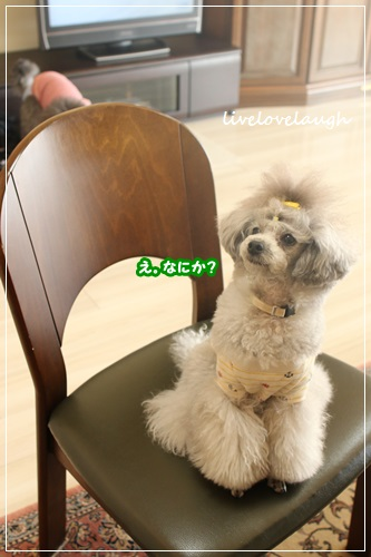 IMG_9864おうち12