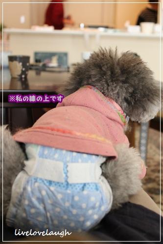 IMG_9813おうち7