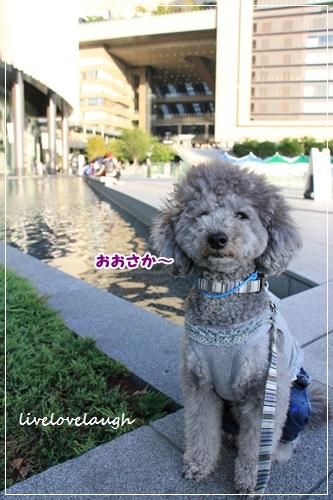 IMG_4150おおさか1