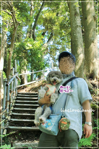 IMG_9301やしき6
