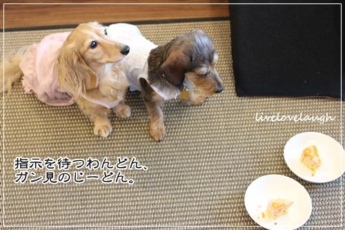 IMG_9433たんじょび21